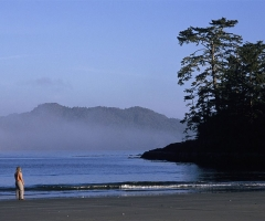 DestinationBC-Adrian Dorst-Chesterman Beach.jpg