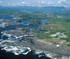 DestinationBC-Ucluelet.jpg