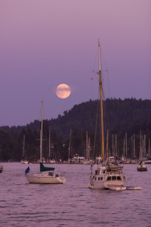 full moon over Ganges Harbour, credit Boomer Jerritt