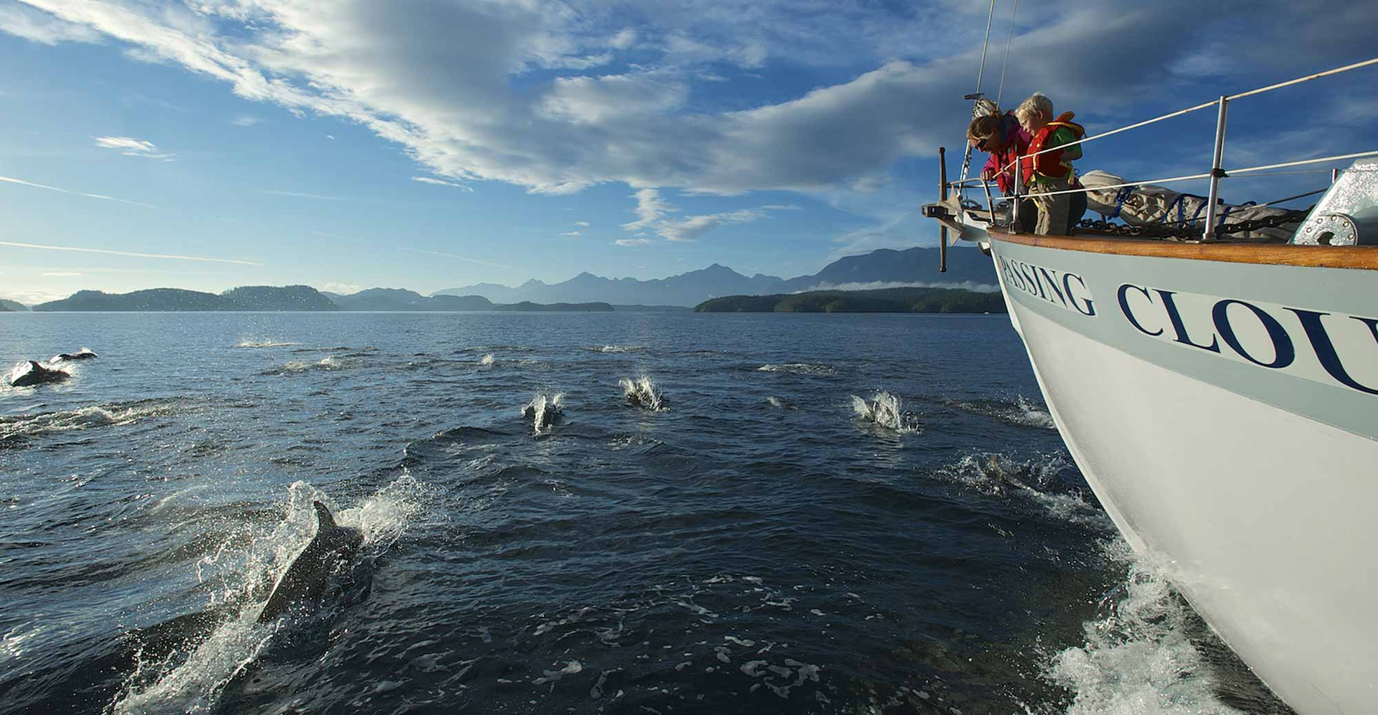 Outer Shores Expeditions | dolphins on bow