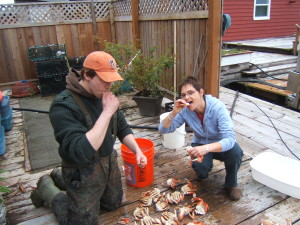 FRESH crabs, credit Sullivan Bay Marina