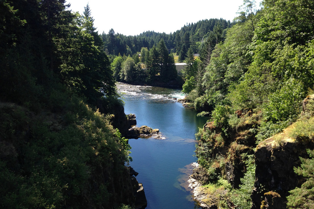 cruise to Elk Falls Bridge BC coast