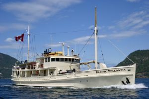 luxury yacht charters BC coast